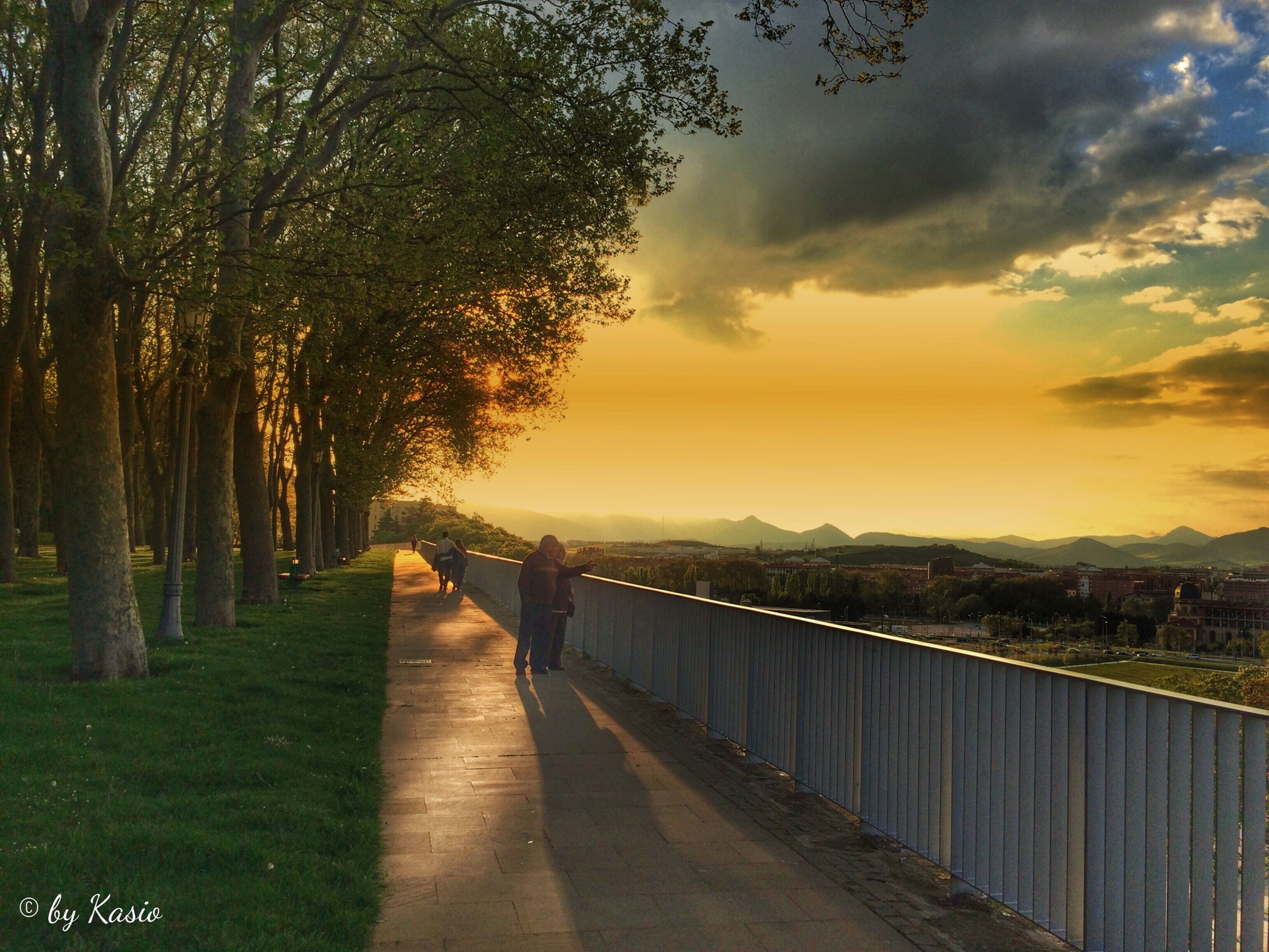 the way forward, sunset, sky, tranquility, tree, tranquil scene, diminishing perspective, water, railing, cloud - sky, scenics, beauty in nature, vanishing point, nature, footpath, walkway, road, cloud, idyllic, narrow