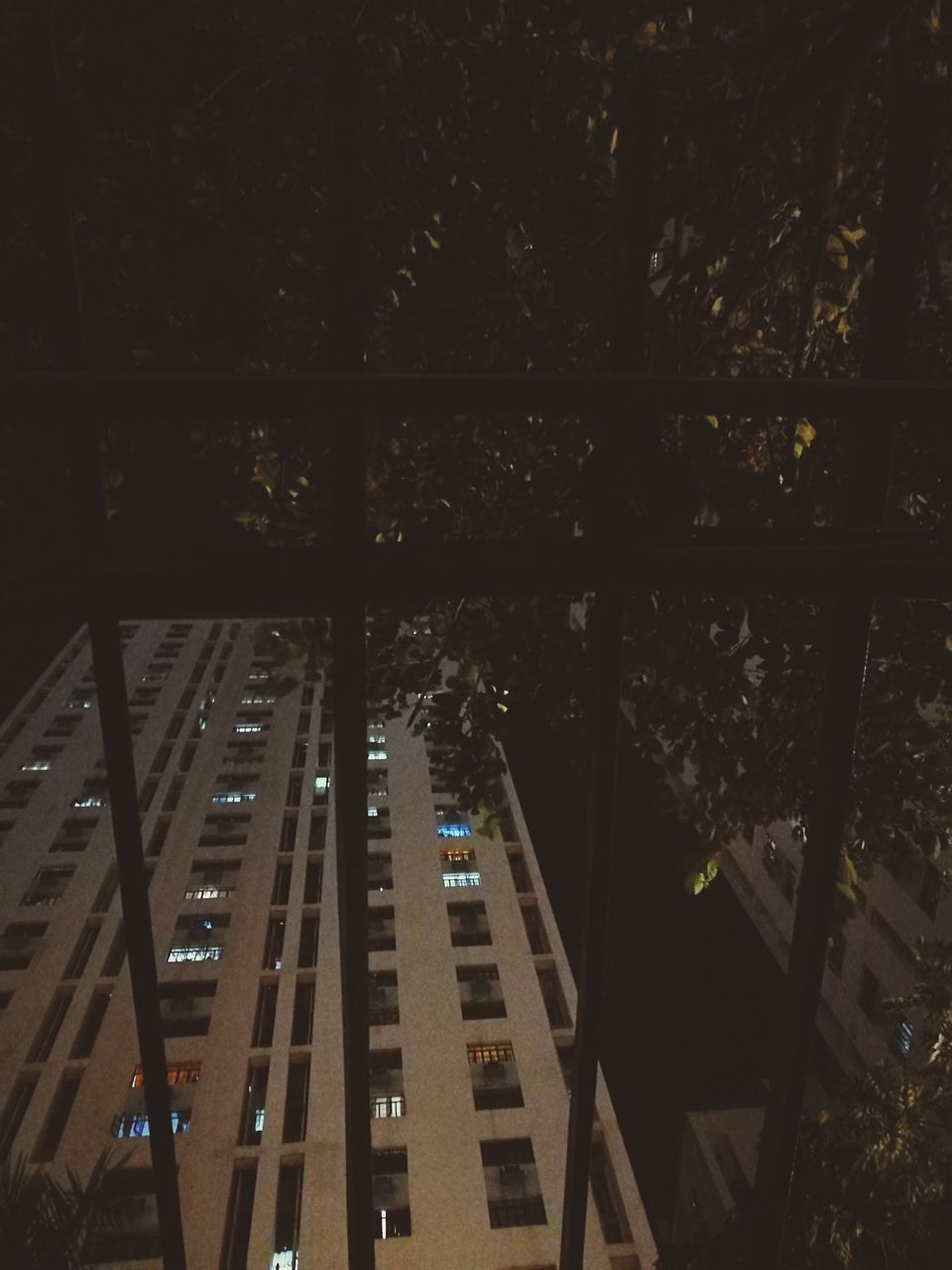 architecture, night, built structure, no people, tree, indoors, city