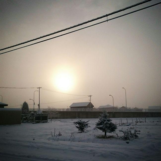 朝陽☀ 北海道 安平町追分地区 今朝も雪 あーイヤだ なおのしんphoto