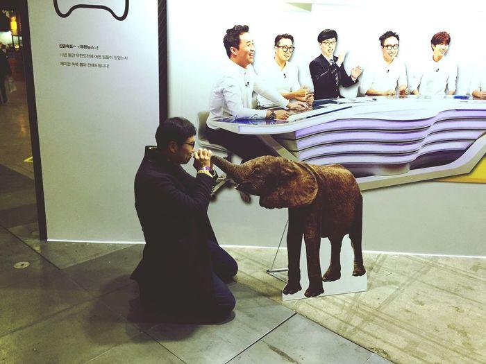Mudo Expo at KINTEX, Ilsan, Kyeonggi province. Kissing with Doto the elephant. Doto Mudo comedy elephant