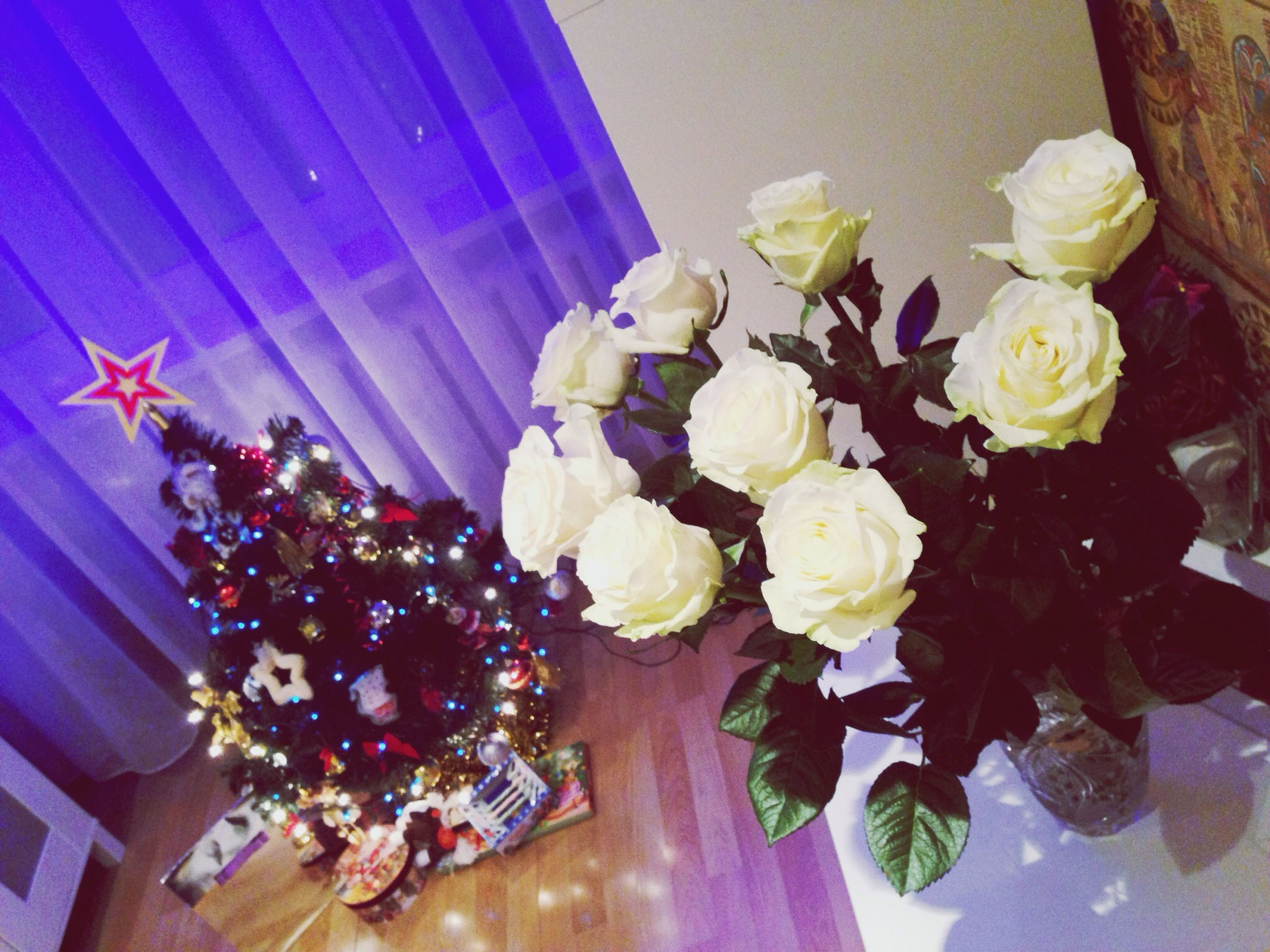 flower, indoors, fragility, decoration, petal, freshness, vase, glass - material, low angle view, illuminated, blue, home interior, bunch of flowers, flower head, beauty in nature, transparent, celebration, window, nature, flower arrangement