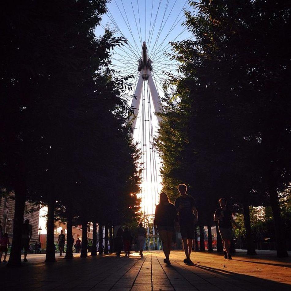 The London #Eye on end of #summer sunlight ??☀️??☀️??? #londoneye Gi_uk Igers_london Summer Ig_england Love_london Ic_cities_london Ig_london Eye Aauk LondonEye Capture_today Gang_family Loveyoursummer Londonpop Mashpics Allshots_ Top_masters London_only From_city Gf_uk Pro_shooters Alan_in_london Secretlandscapes Insta_london Barbourwildbritain Thisislondon
