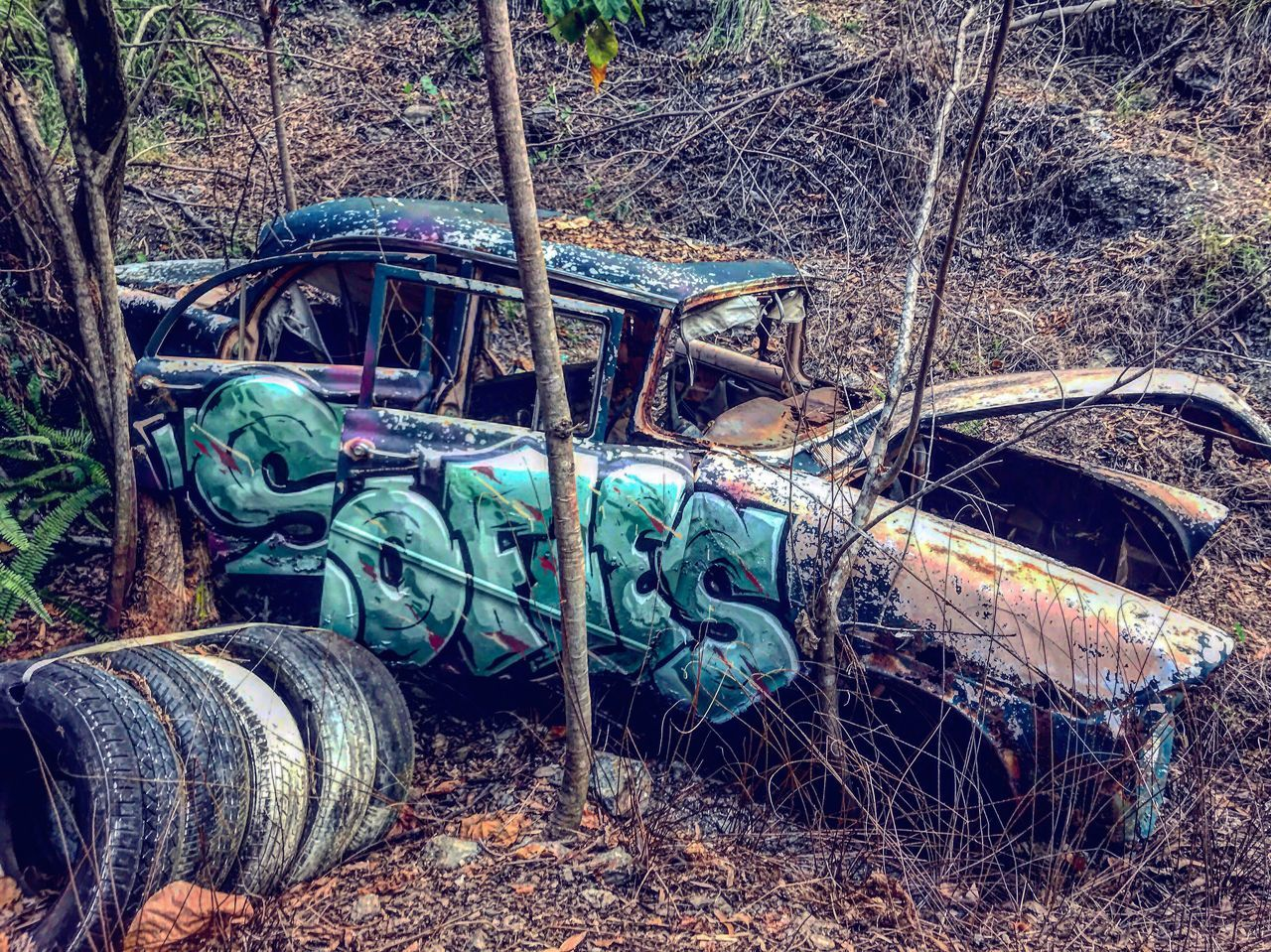 Lost in the wood 🍃🌲 Abandoned Obsolete Damaged Transportation Run-down Bad Condition Mode Of Transport Deterioration Land Vehicle Destruction No People Wreck Rusty Day Outdoors Forest Tree Discarded Decline Nature