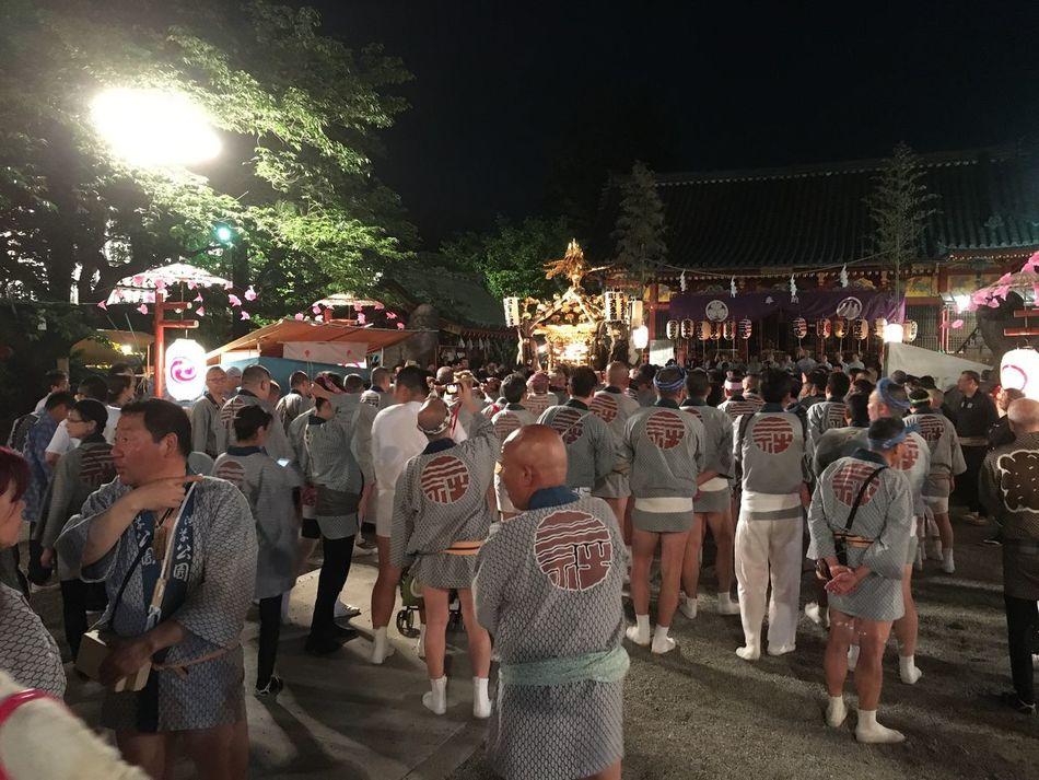 三社祭 Omatsuri Japanese Festival