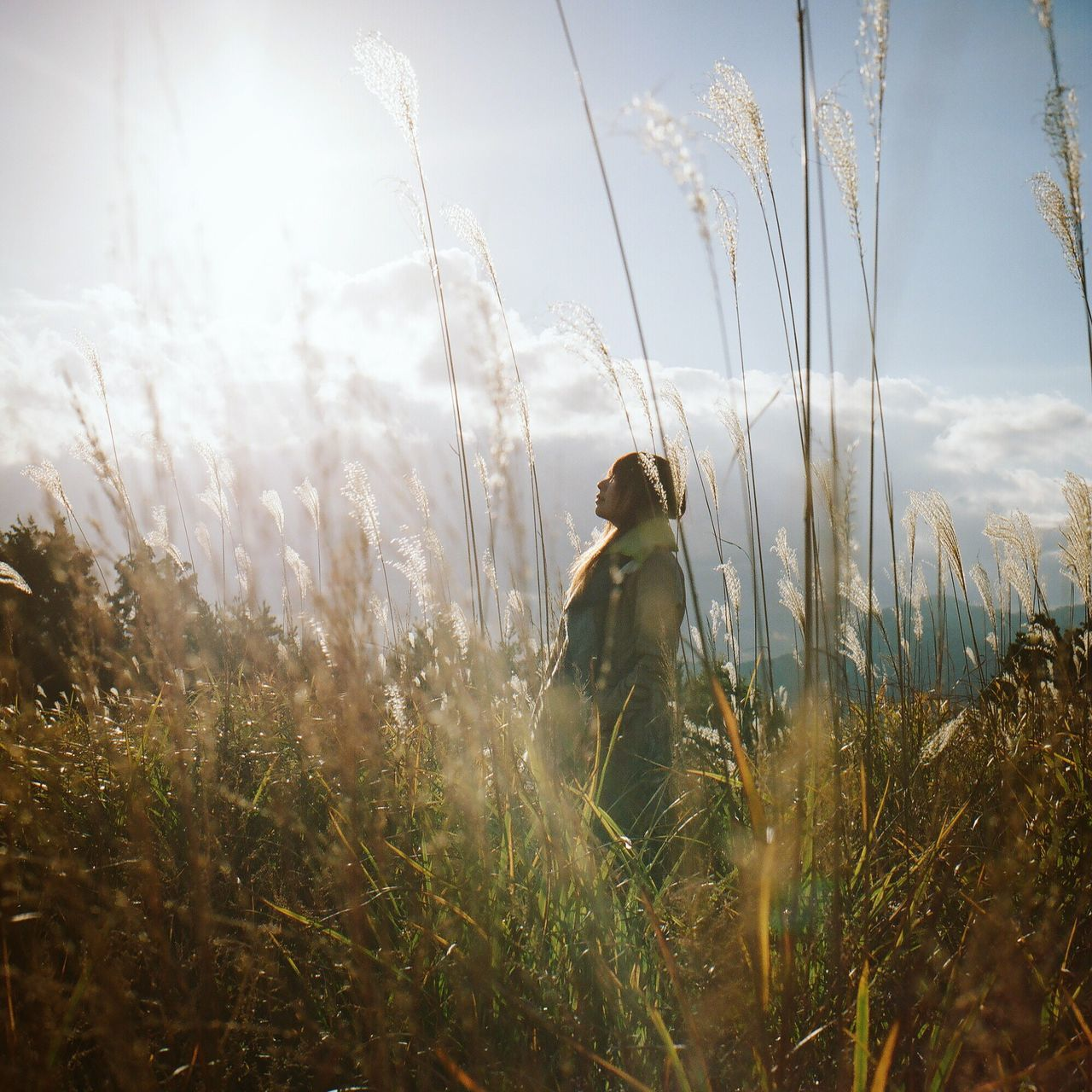 field, grass, one person, nature, sky, growth, outdoors, sunlight, day, young adult, people