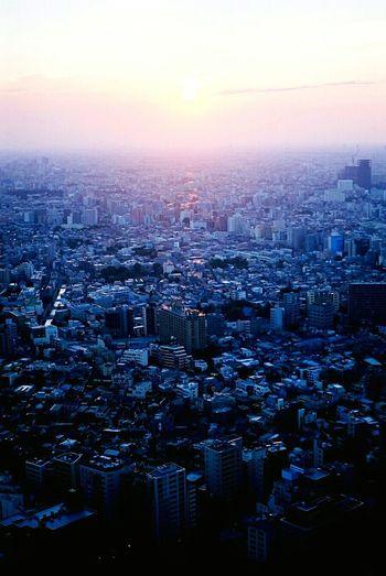 Tokyo Shinjuku Battle Of The Cities