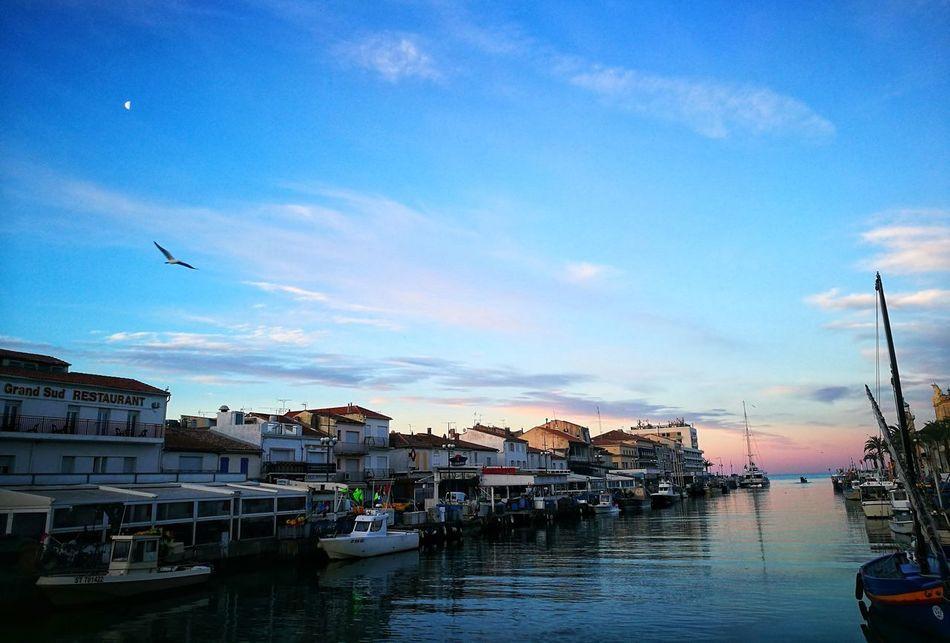 Nautical Vessel Fishing Port Boat Dock Travel Destinations Horizon Over Water Beautiful Colors Sunrise No People Bird Moon Grau Du Roi