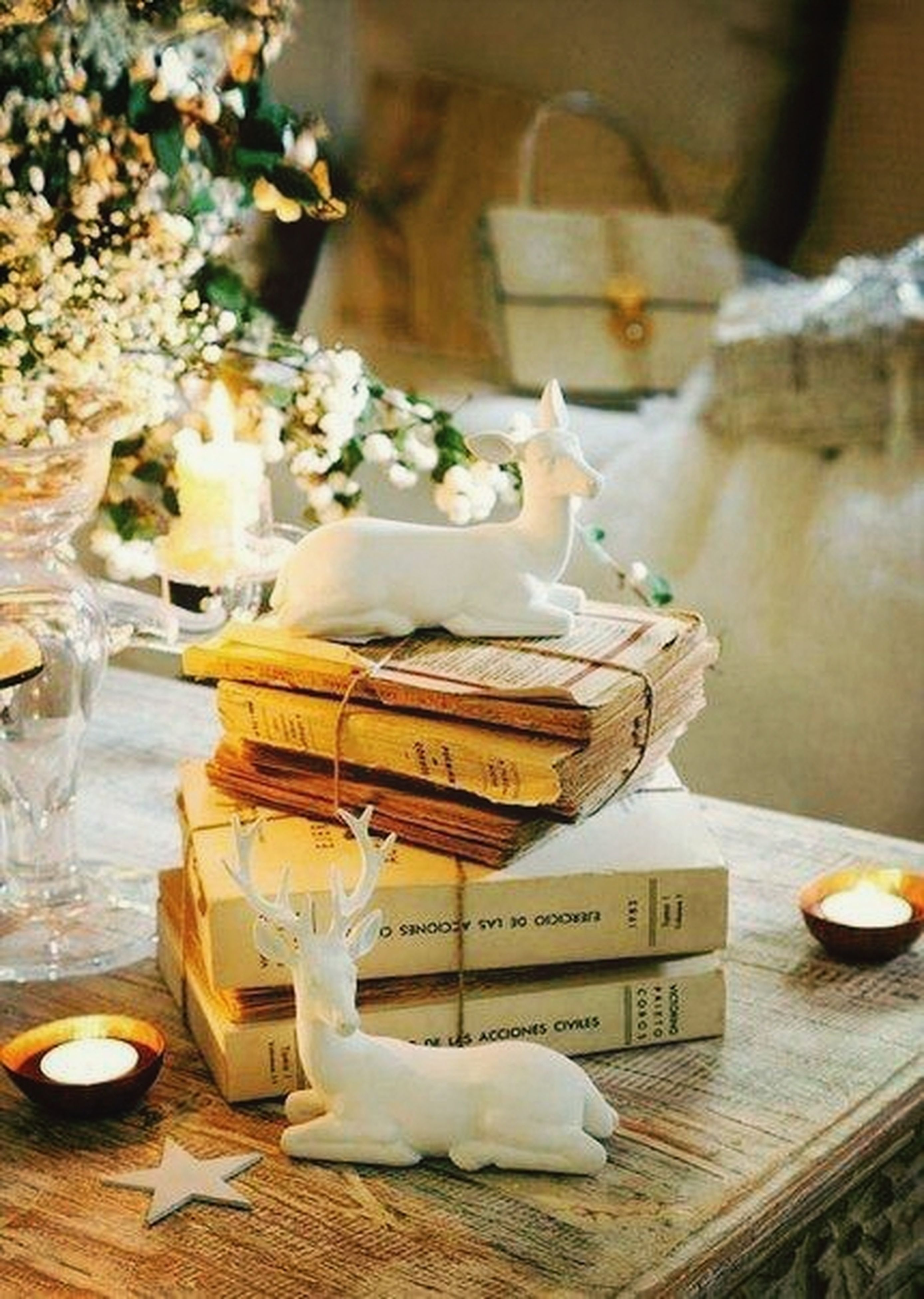 indoors, text, table, flower, western script, focus on foreground, still life, communication, white color, vase, close-up, freshness, no people, wood - material, home interior, decoration, paper, non-western script, animal representation, variation