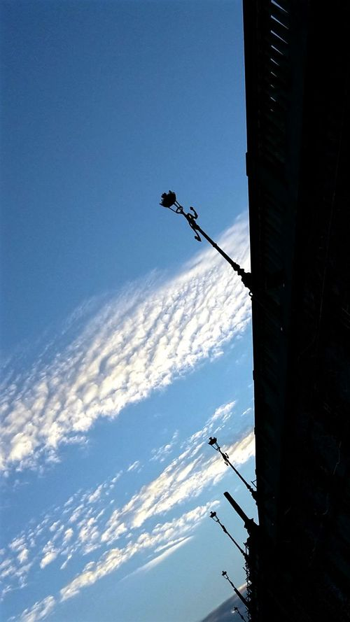 Streetlamp Looking Up Sky And Clouds From My Point Of View Awry Walking Around The City  Clear Sky Outdoors