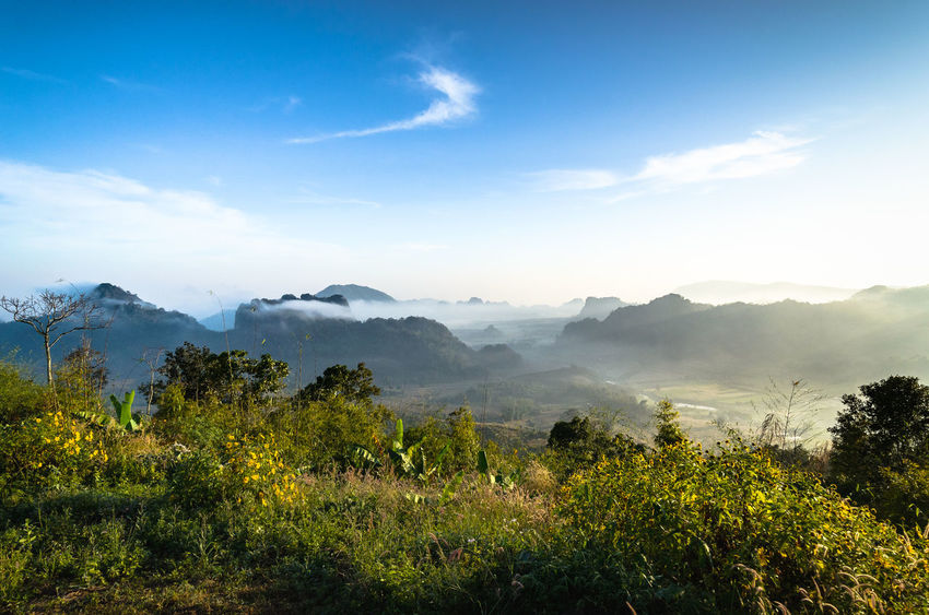 Phu Pa Po Mountain at Loei province, Thailand Green Loei Sky And Clouds Thailand Travel Tree View Wildlife & Nature Beauty In Nature Forest Fuji Landscape Mountain North East Thailand Orange Color Phu Sky Sun