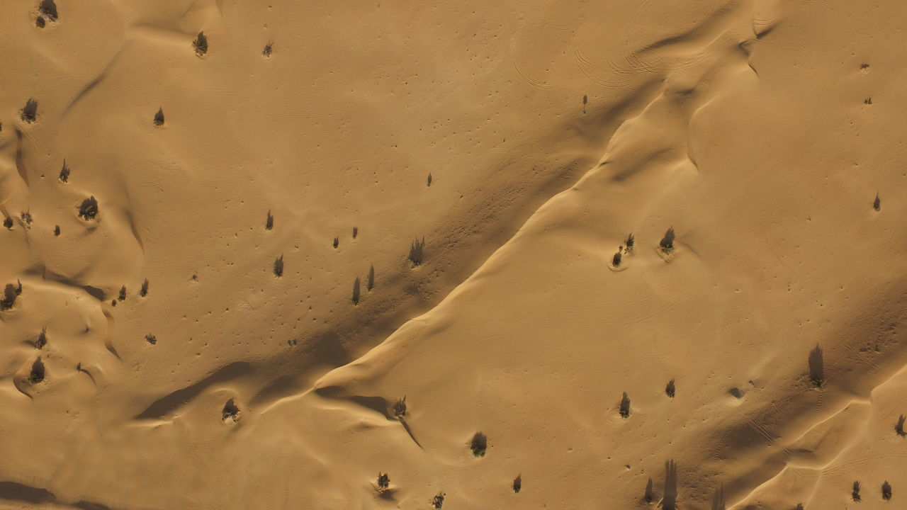 Dubai Desert Desert Dubai UAE Nature Landscape Collection Birds Eye View Drone  Dronephotography Droneshot