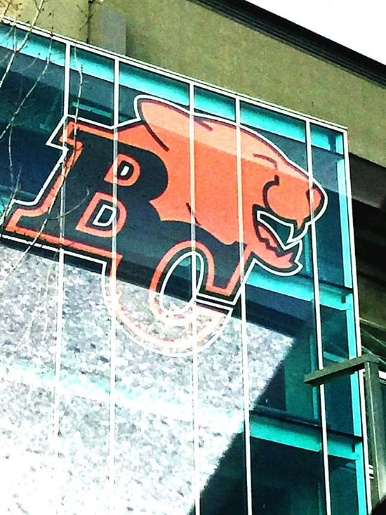 BC Lions - On a Saturday drive, oit and about snapped this frame composing of reflections and logo. The BC Lions of Vancouver pasted across BC place stadium. BCLions Bcplace Downtown Vancouver Logo Sports Glass Reflections