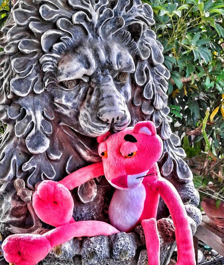 Friends are friends Special Effects The Journey Is The Destination Share A Photograph Pink Panther On The Road Life Is A Journey Pink's On A Journey Save A Life Adopt Adopt To Save A Life Journey Of Life For The Love Of Photography Garden Photography