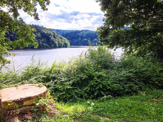 Bitburger Stausee in Biersdorf Eifel Rheinland-Pfalz  Tourist Attraction  Reservoir Beauty In Nature Nature Landscape Landschaft