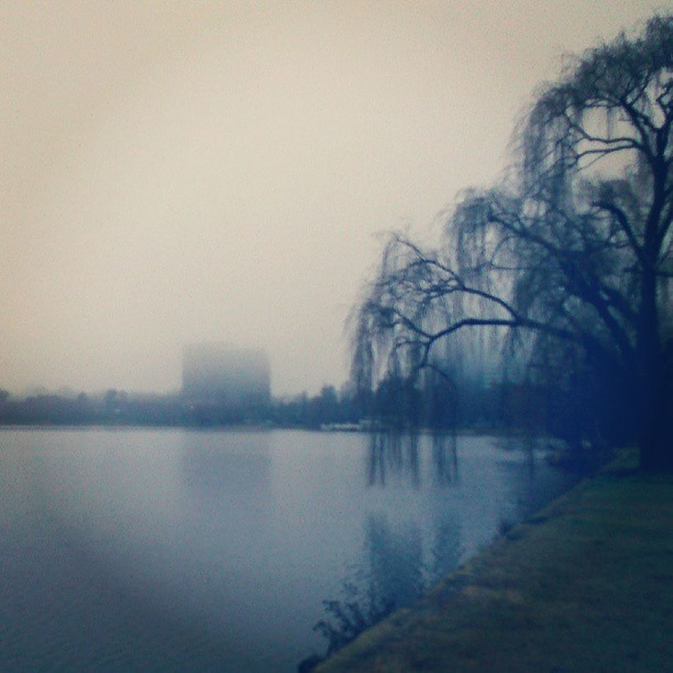 A half Misty Morning earlier in the day