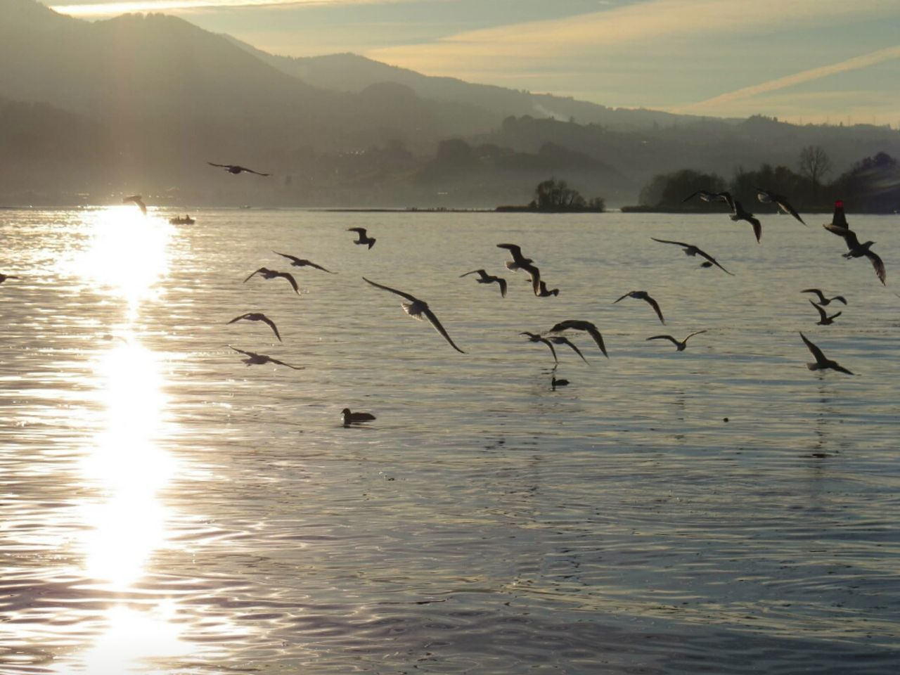 Birds Flying Over Lake By Mountain Against Sky During Sunset