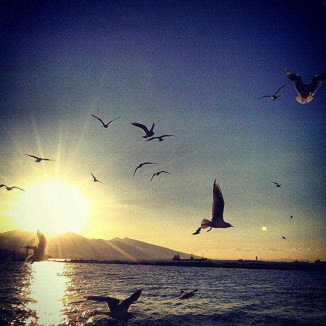 KonakPier Turkey Izmir Hayatinrenkleri