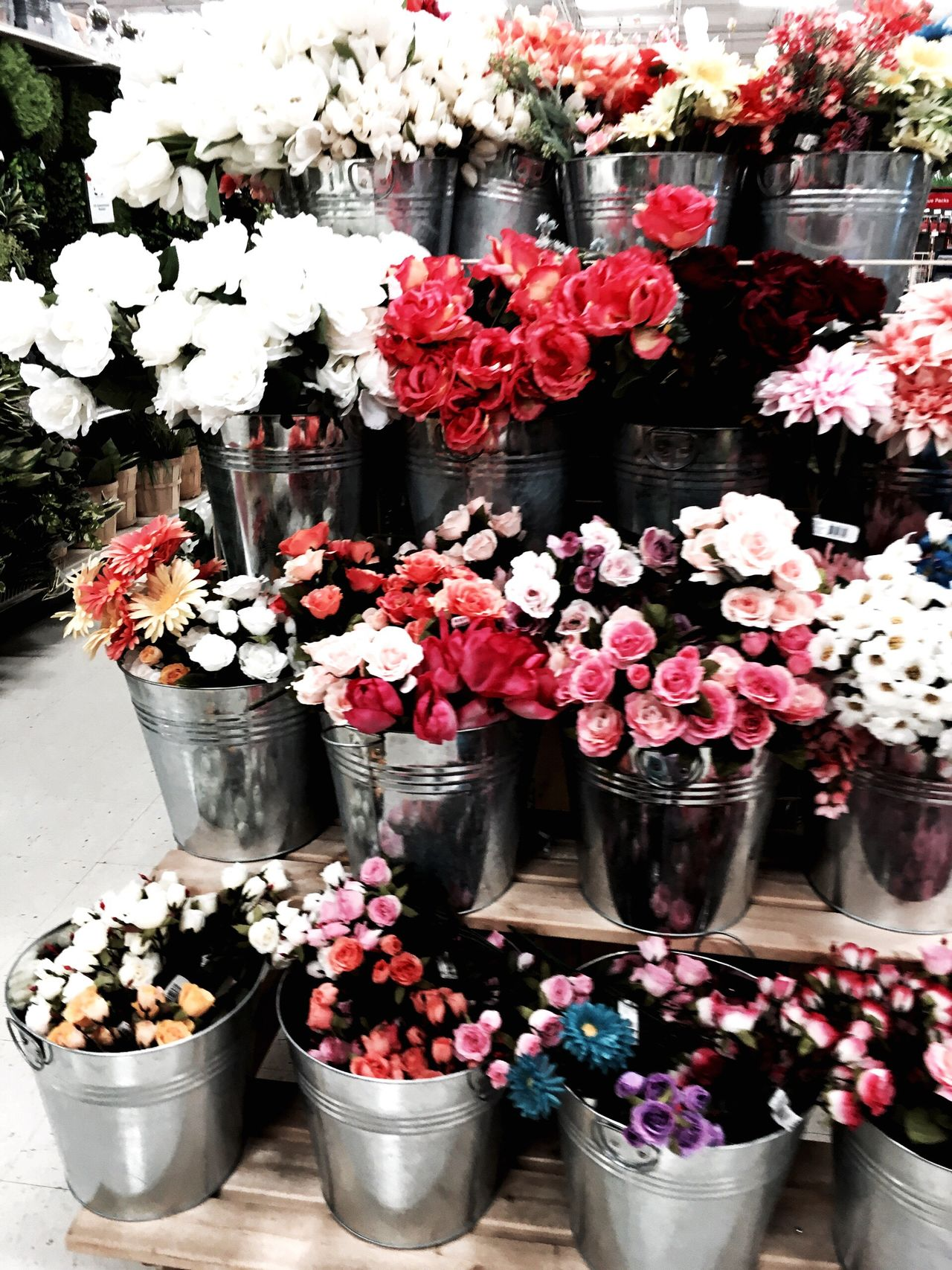 Found flowers at the store. Flower Flower Shop Retail  Nature Beauty In Nature Flower Market First Eyeem Photo