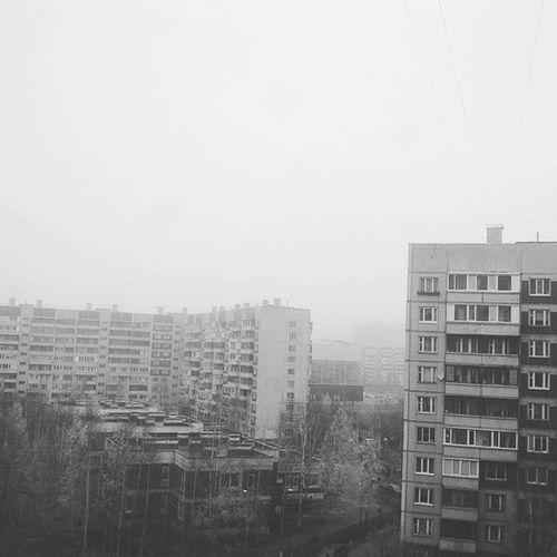 Tuman Pizda -rulyu