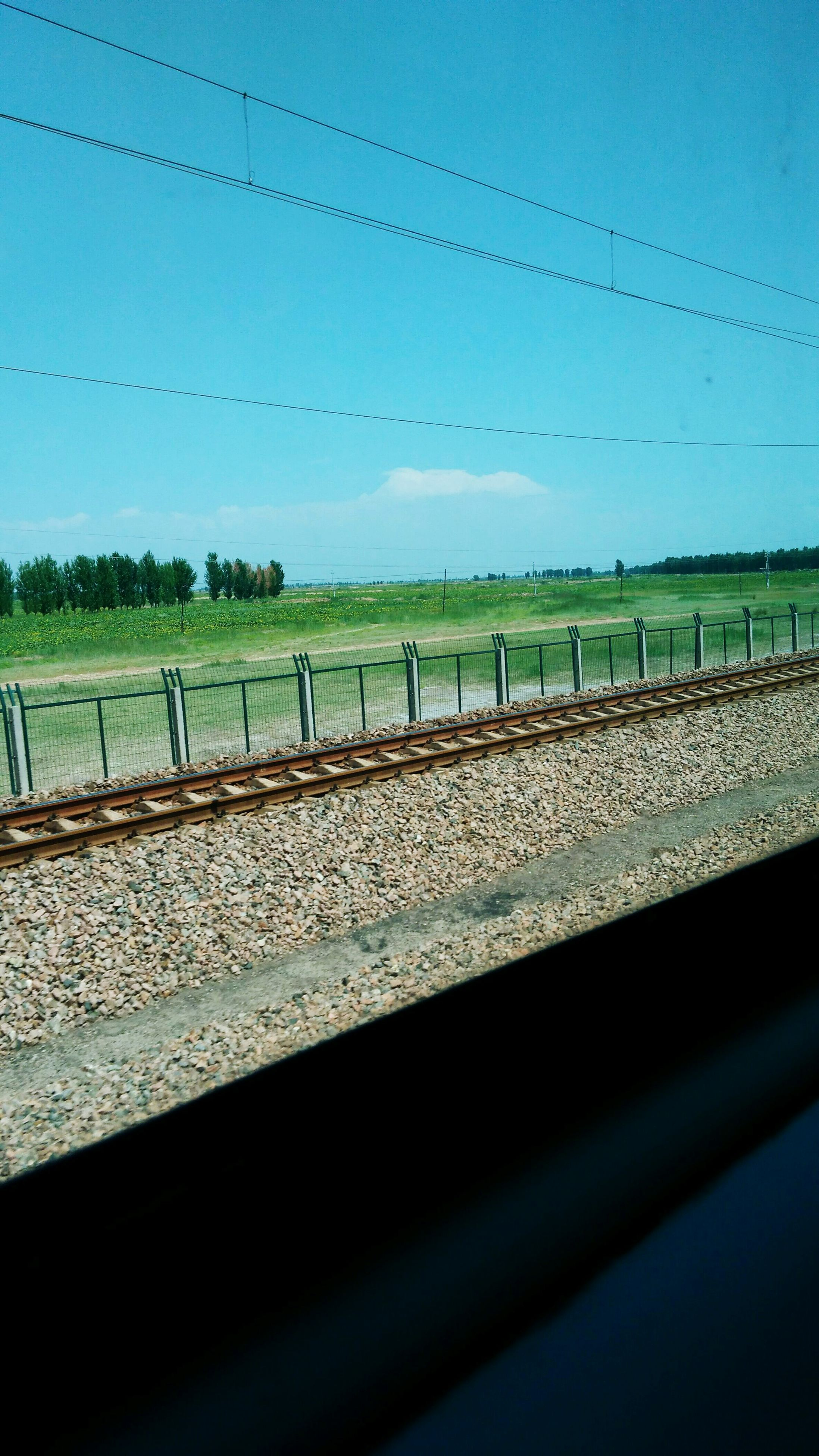 clear sky, railroad track, rail transportation, fence, transportation, animal themes, sky, connection, public transportation, blue, no people, wildlife, in a row, day, outdoors, power line, metal, bird, railroad station
