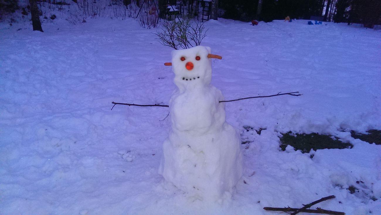 First Eyeem Photo Snow Frosty