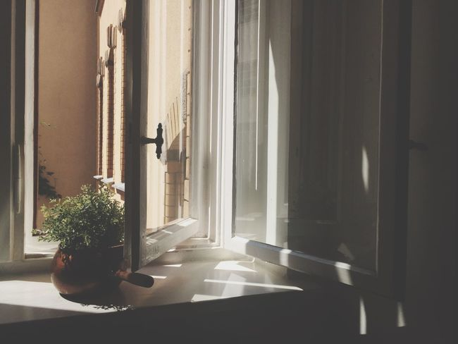 Light And Shadow Kitchen Window