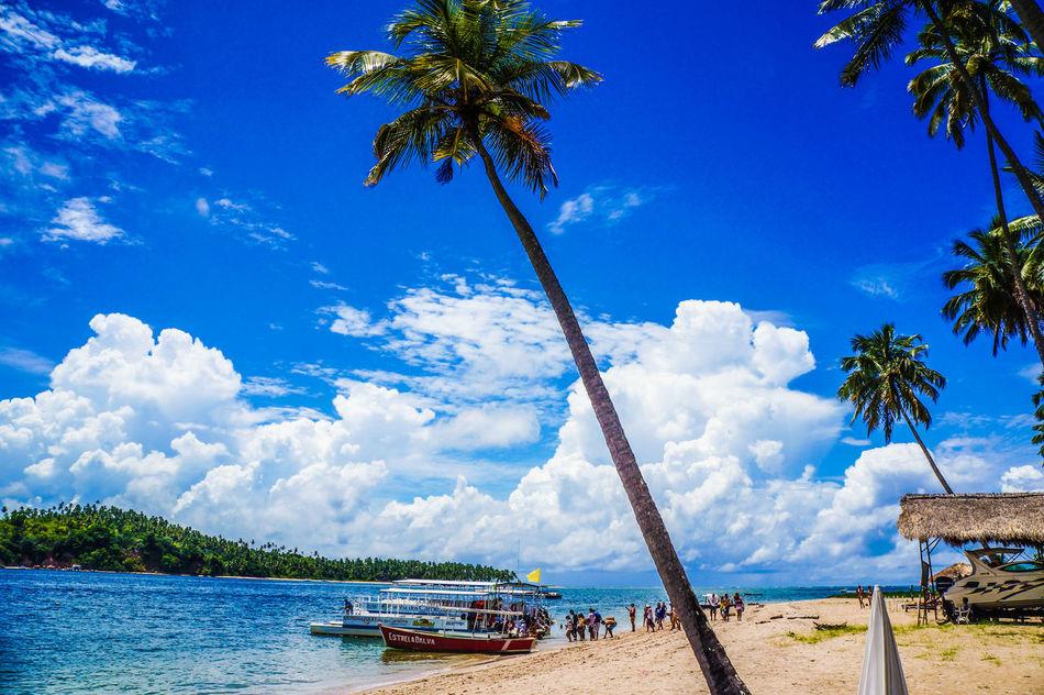 Blue Brazil Cloud - Sky Day Landscape Nature Northeast Brazil Outdoors Pernambuco Praia Dos Carneiros Sea Sky Sunlight Tranquility Travel Destinations Vacations