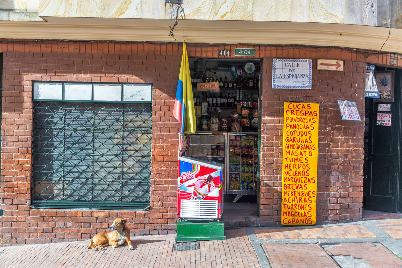 BOGOTA, COLOMBIA - APRIL 21: Dog laying down in front of a shop in La Candelaria neighborhood in Bogota, Colombia on April 21, 2016 Architecture Bogotá Brick Brick Wall Building Exterior Candelaria City Colombia Culture Downtown La Candelaria Market Neighborhood No People Retail  Shop Small Business South America Store Travel