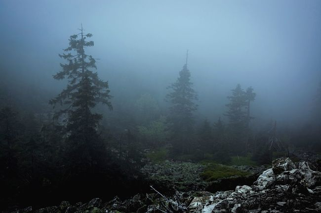 der Nebel des Grauens 😱😂 Misty Darkness And Light Foggy Morning Fog Czech Republic Liberec Hiking Mountain Jested Morning Foggy Woodscapes Woods