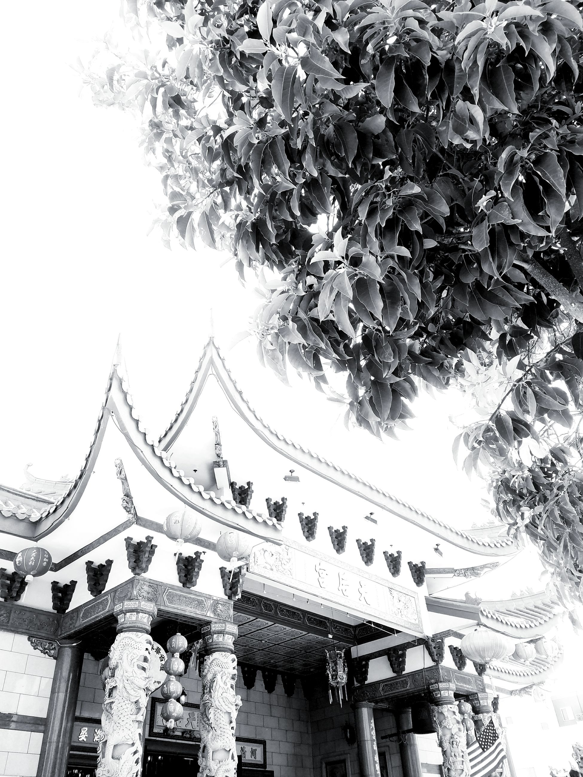 low angle view, built structure, building exterior, architecture, religion, spirituality, outdoors, day, no people, hanging, flower, tree, sky, carousel