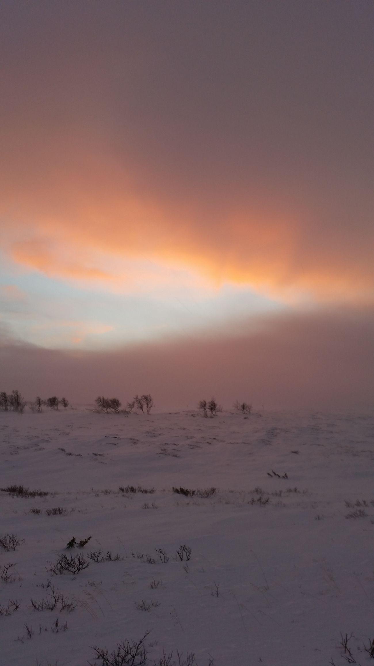 Ojon Before The Storm Magic Sky Pink Sky Snow