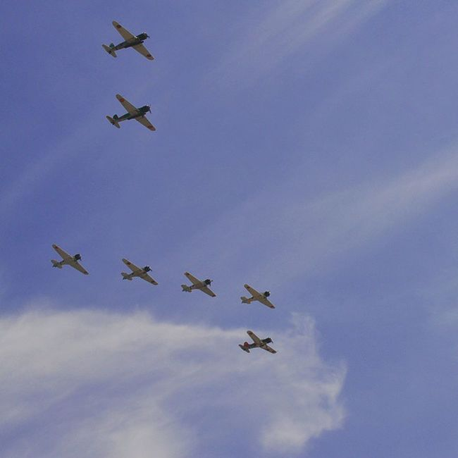 Wow15 Wingsoverwayne Toratoratora