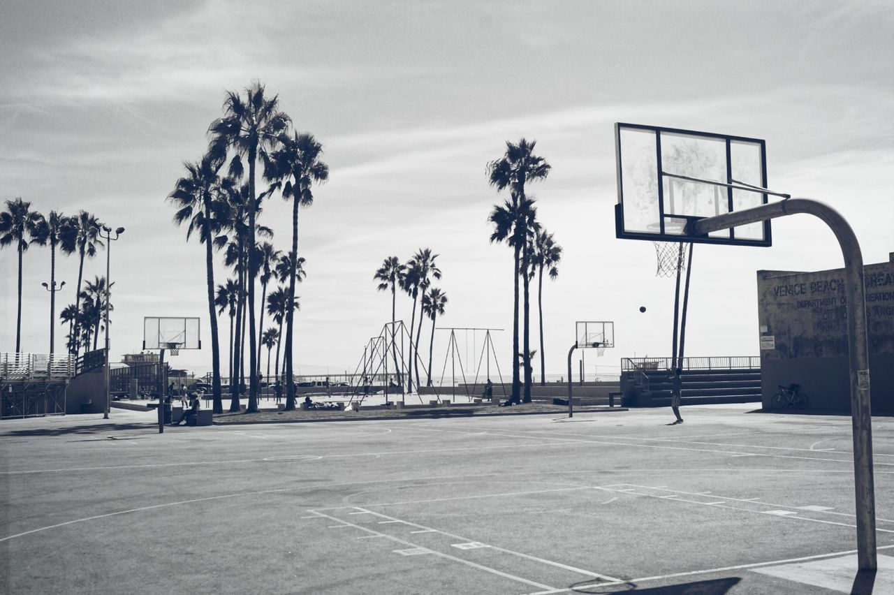 Venice Beach Playground Basketball - Sport Palm Tree California Dreaming Kalifornien Venice Beach USA Photography City Travel Destinations Travelling EyeEmNewHere Photooftheday Travelphotography Tree Outdoors No People Rollercoaster Day Sky