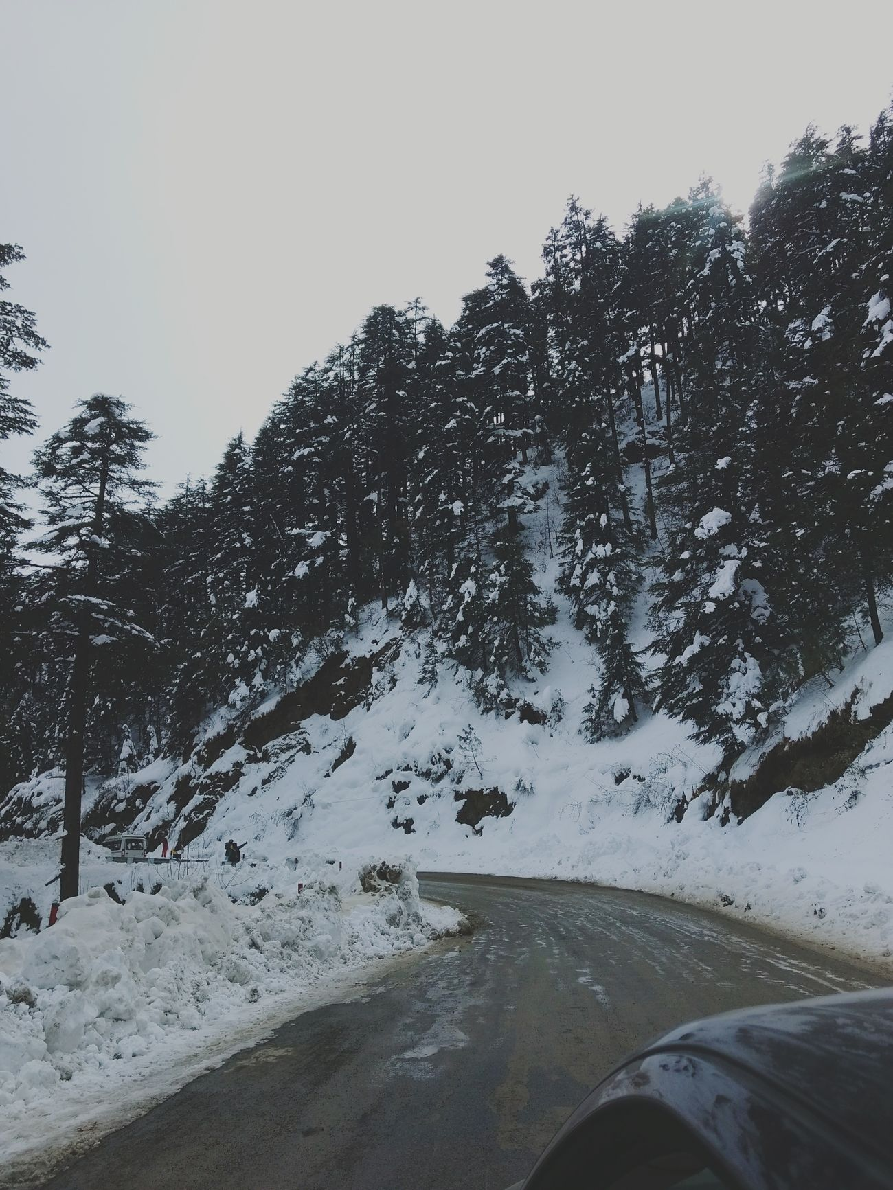 Tree Nature Sky Car Snow Outdoors Day Winter Beauty In Nature Cold Temperature Scenics Nature Mountain Landscape Ontheroad Pine Tree Environment Beauty In Nature Travelling Photography Lush Foliage No People Tree Forest