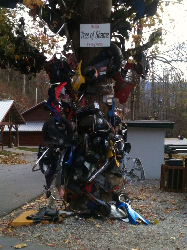 """"""" Tree Of Shame"""" (Wrecked motorcycle parts)aka: The Dragons Tail. 318 curves in 11 miles."""