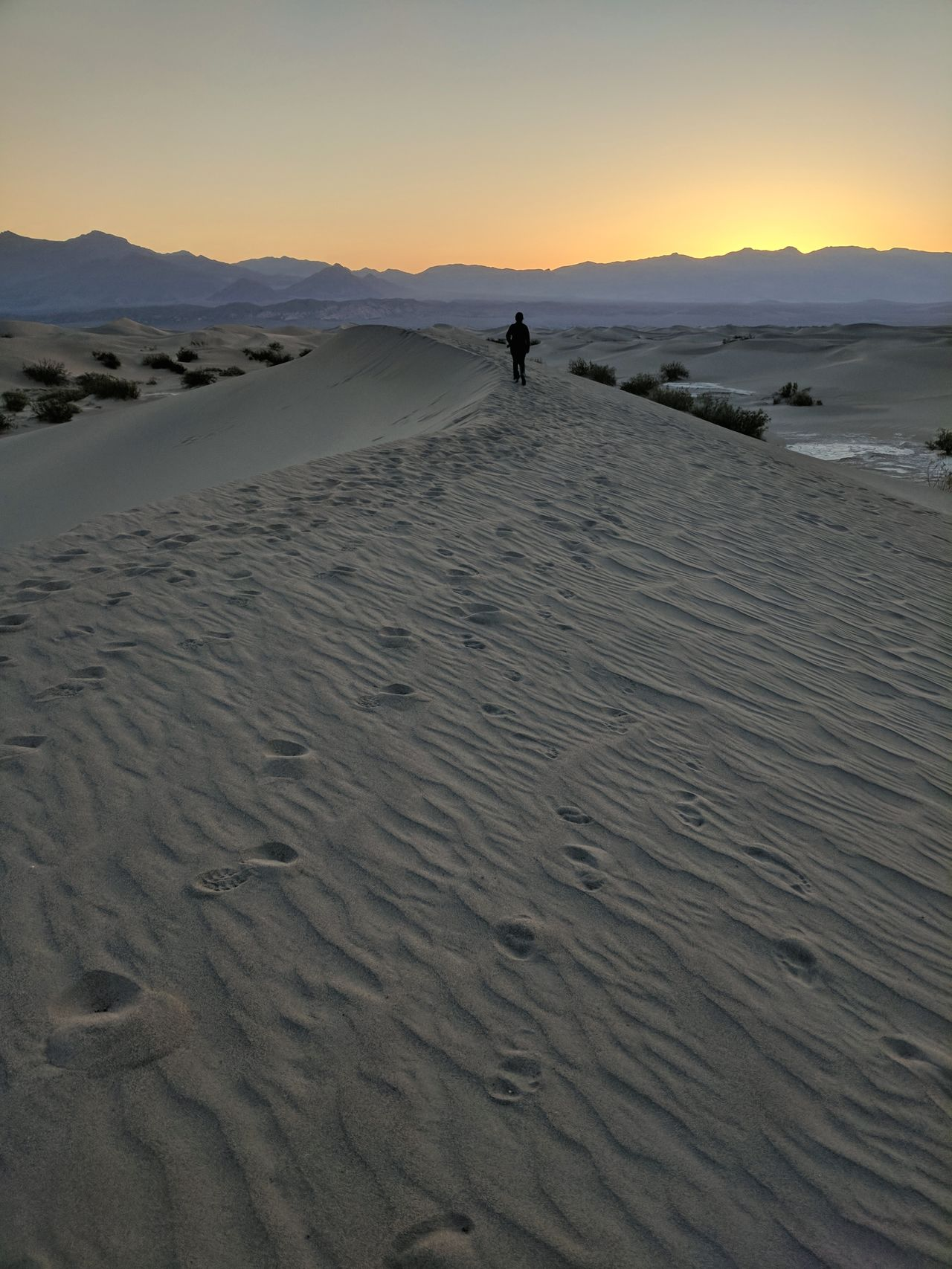 Death Valley National Park California One Person Footprints Hiking Active Lifestyles Beauty In Nature Desert Sky Sand Dune People Outdoors Landscape Silhouette Sand Horizon Arid Climate Sunrise Dawn Day Extreme Terrain Sunset Scenics Mountain Range Vast