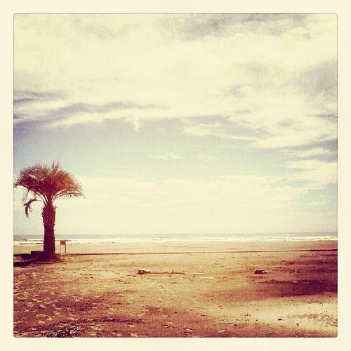 朝、の、海 Sea ocean