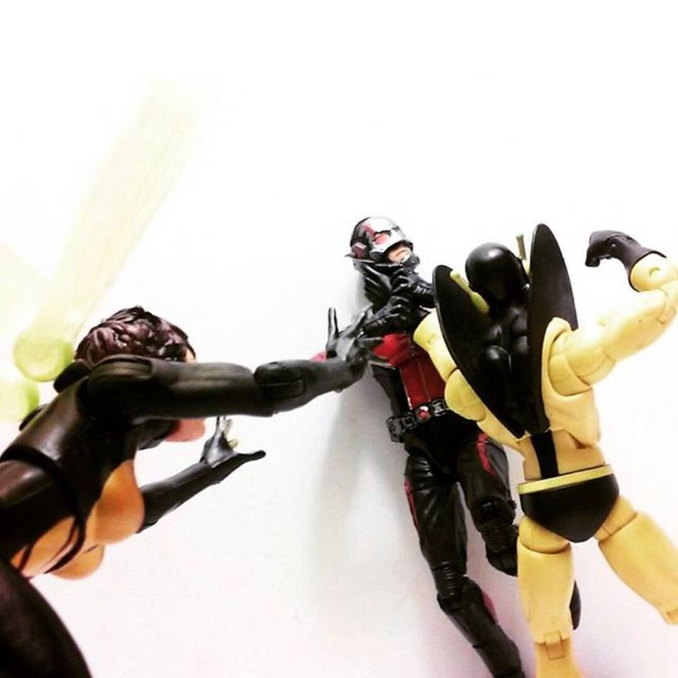 """Say goodbye..Scott."" ""H-hope a little help here"" ""Daron don't do this!!"" Marvellegends Infiniteseries Daroncross Yellowjacket Antman Hopevandyne Scottlang Mcu Hankpymm Marvelentertainment Nerd Hasbro Comics Avengers Tcb_peekaboo Toyslagram Tcb_flyupandaway Toysrmydrug Actionfigures Articulatedcomicbook Actiontoyart Toybiz Actionfigurephotography Figurecollector Collection collector wasp figurelife"