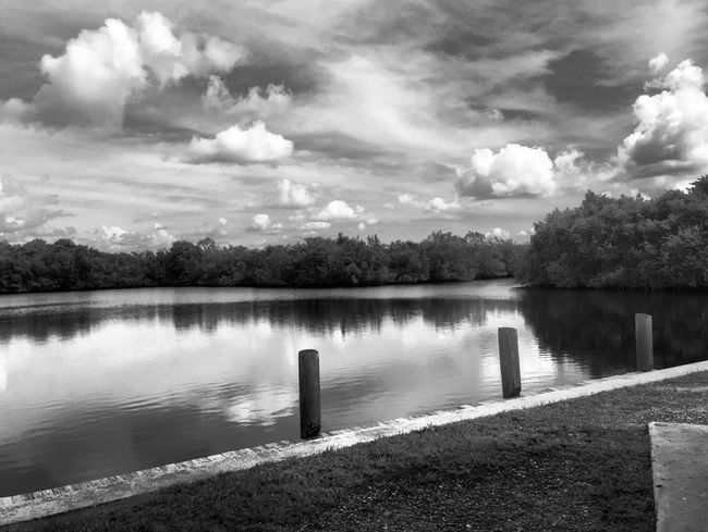 Beauty in nature Nature Photography Beauty In Nature Cloudscape Outdoor Photography Outdoors Tranquil Scene Scenics Mangroves EyeEm Nature Lover