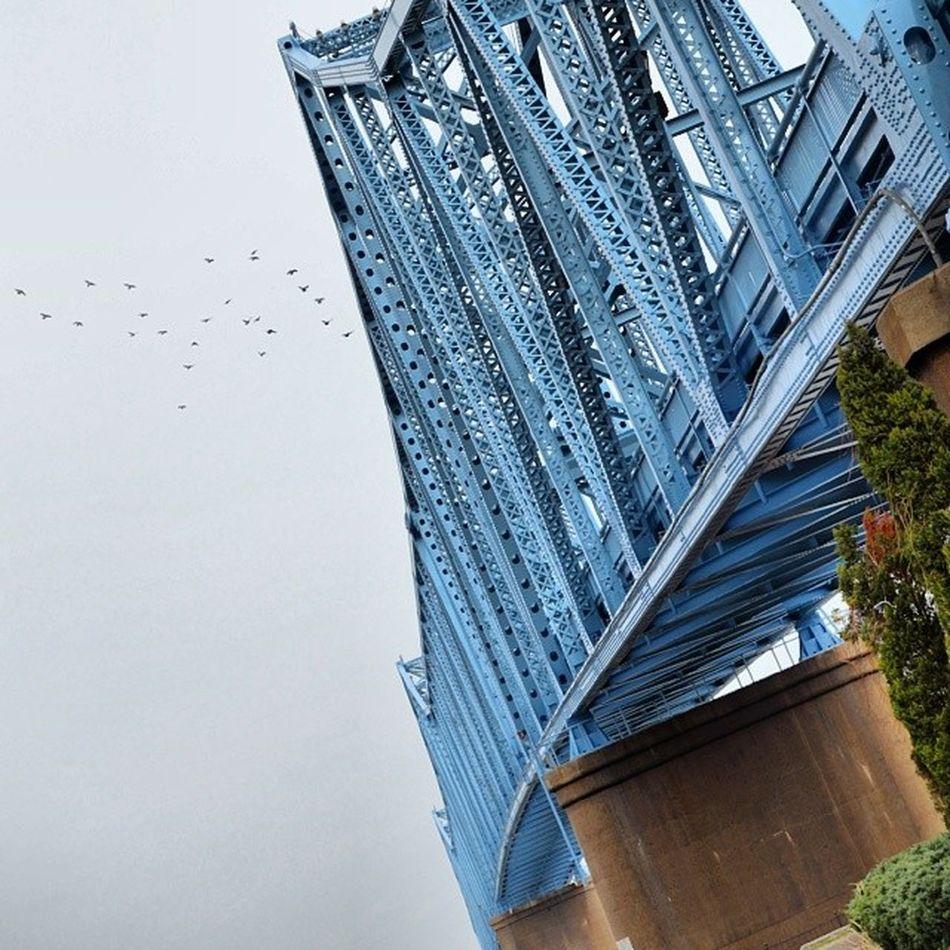Welcome to Kentucky! Bluebridge Owensboroky Nikon
