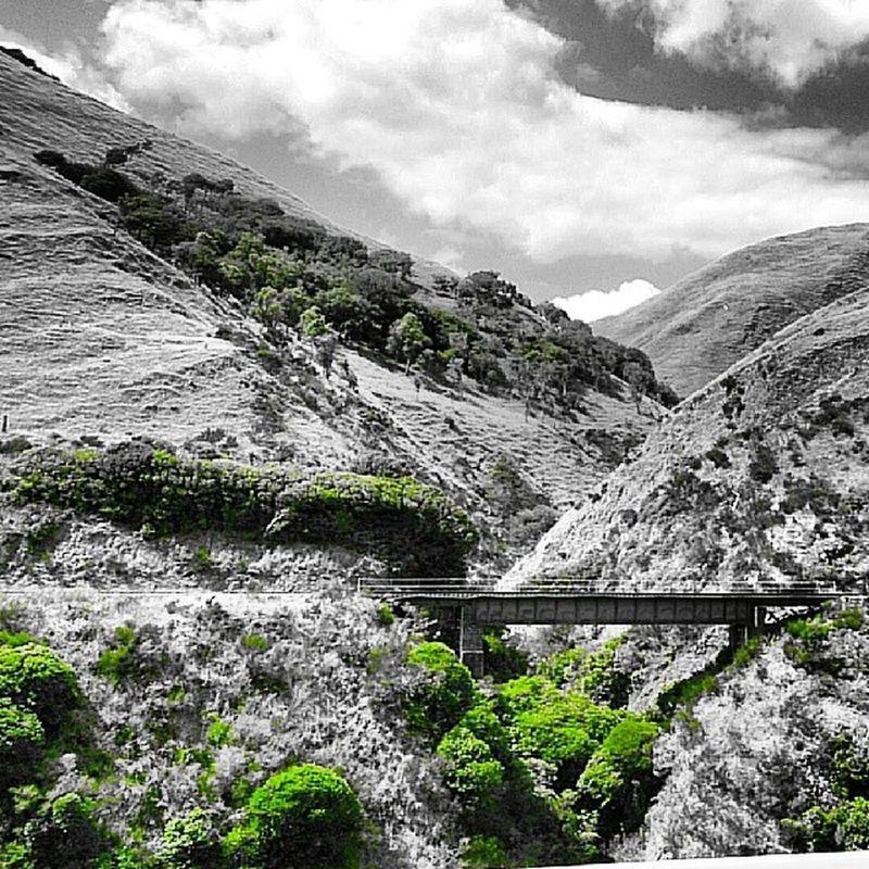 Manawatu Gorge Manawatugorge