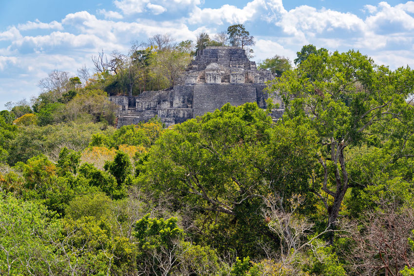View of huge pyramid in the ancient Mayan ruins of Calakmul, Mexico Architecture Calakmul Central America Mayan Mayan Ruins Mexico Pyramid Ruins Travel Biosphere Calakmul Biosphere Reserve Day Forest Jungle Nature No People Outdoors Rain Forest Rainforest Reserve Stone Temple Tourism Travel Destinations