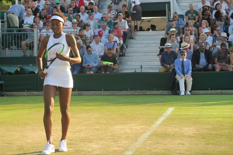 Athlete Championship Getting Ready Grass Sportswoman Tennis Tennis Court Tennis Courts Tennis Player Tennis Racket Tennis Racquet Tennis 🎾 Thinking Waiting Wimbledon