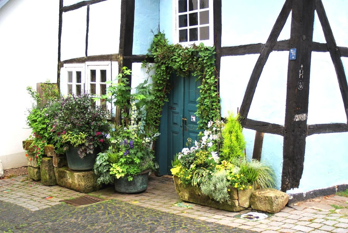 Architecture Building Exterior Built Structure Day Flower Growth Nature No People Outdoors Plant Potted Plant Sky Tecklenburg Tree Window Window Box