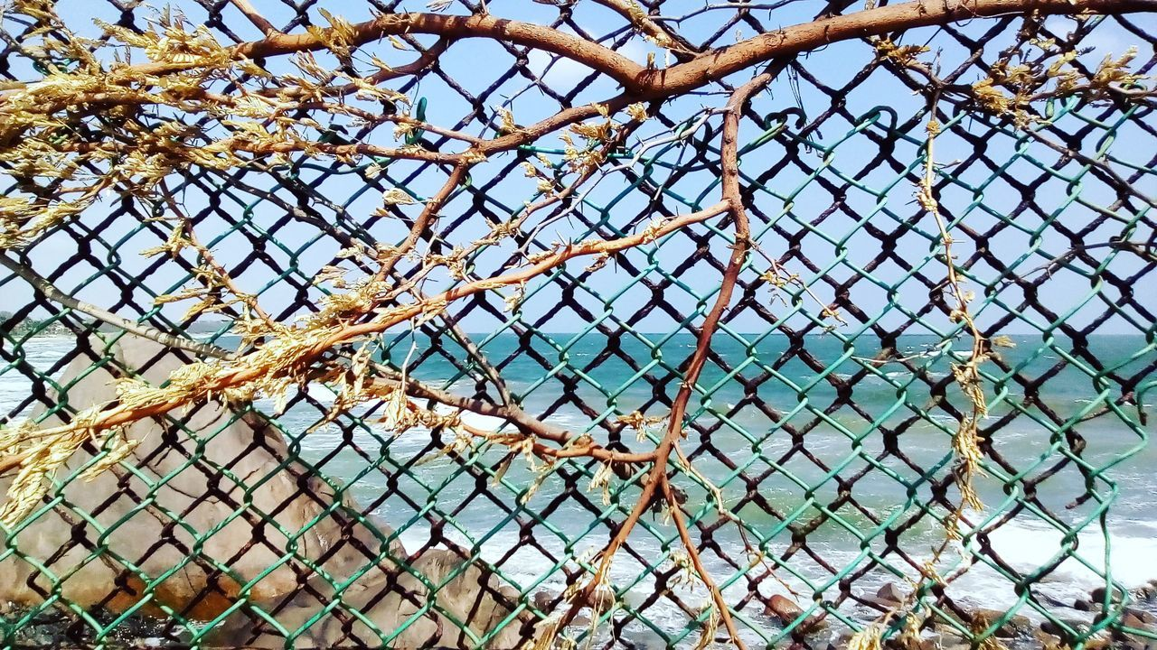 chainlink fence, safety, protection, metal, security, day, sky, outdoors, no people, water, nature, rusty, close-up, clear sky, sea, tree, beauty in nature