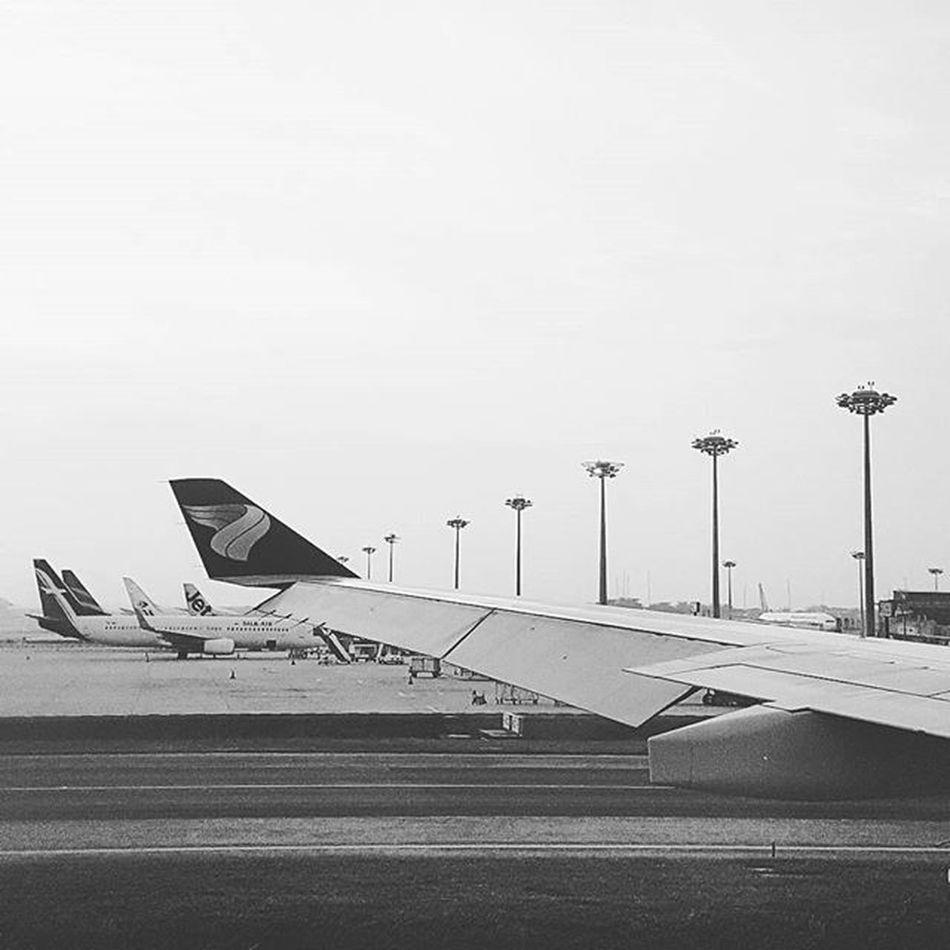 Waiting for take off... Travel Airplane Getaway  Shorttrip Oman Airlines Runway Changiairport Singapore World Traveller International Sunday Airbus Jetsetter Instagram Instaphoto Photography Blackwhite Omanairlines Malaysia Destination Journey