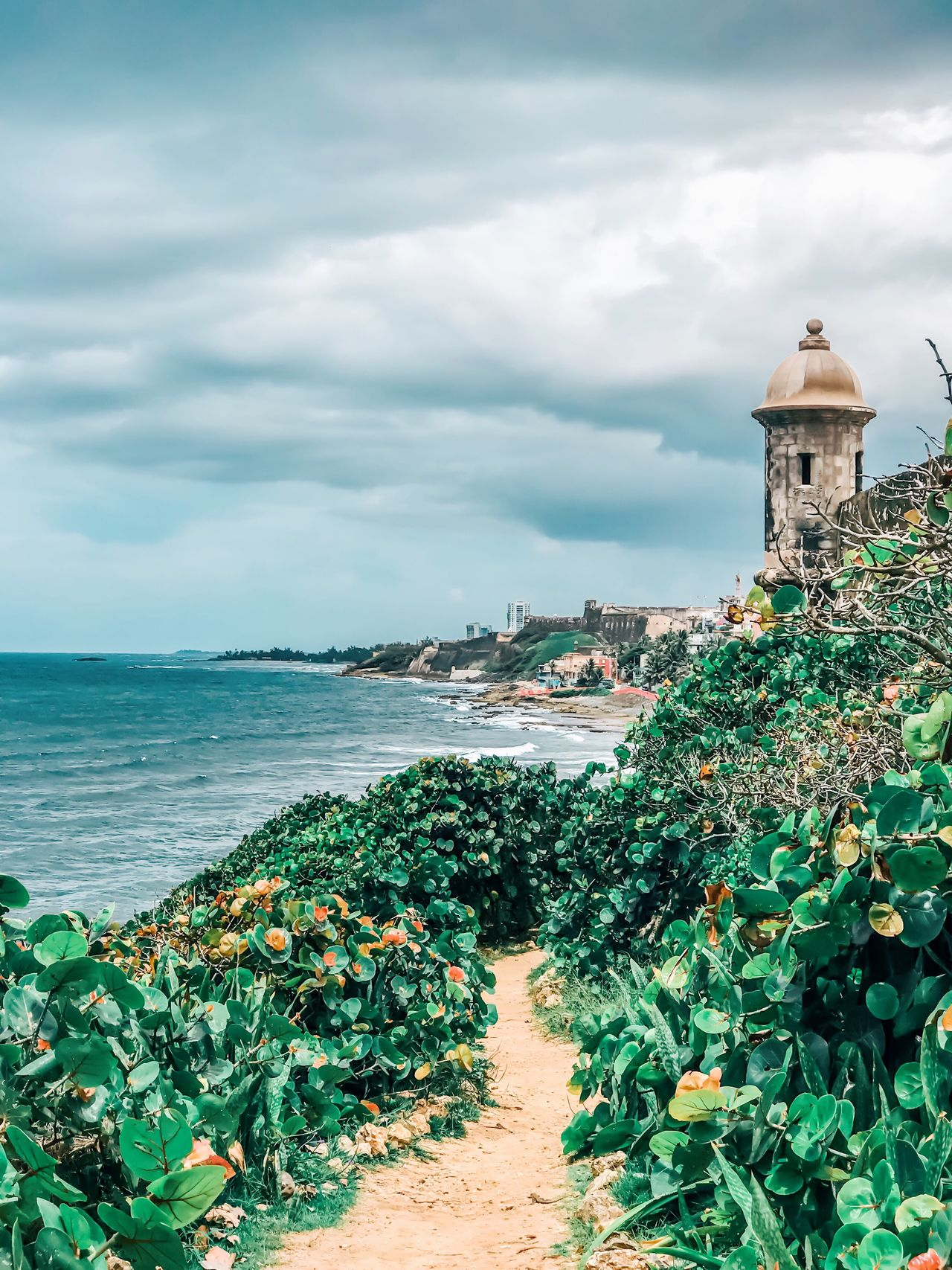 Puerto Rico Sea Cloud - Sky Sky Horizon Over Water Nature Day Beach Beauty In Nature Water Outdoors Plant Built Structure Tranquility Scenics Architecture No People Green Color Travel Destinations Building Exterior Landscape Ocean View Tranquil Scene Vacation Neighborhood Map