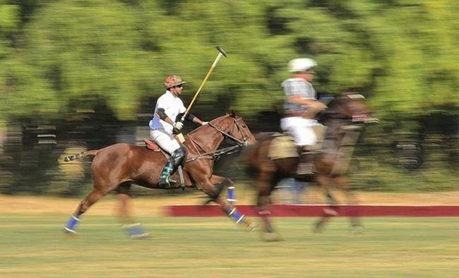 Jodhpur Bluecity Jopolo Polo Igersjodhpur Igersjaipur Click_india_click Wwim13 WWIM13Jodhpur Likeforlike Likeforfollow Followme @shoutouts.india @being_jodhpurian @jodhpurshoutouts @jodhpur_shoutout