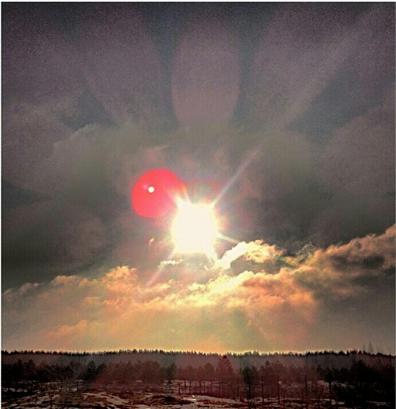 Игры с солнцем Sunny Day Sky And Clouds Sun Trees Vscocam VSCO Msco пейзаж