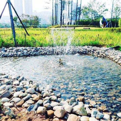 Waterfalls Water Summer Busan Korea 시민공원 한국 부산 대한민국